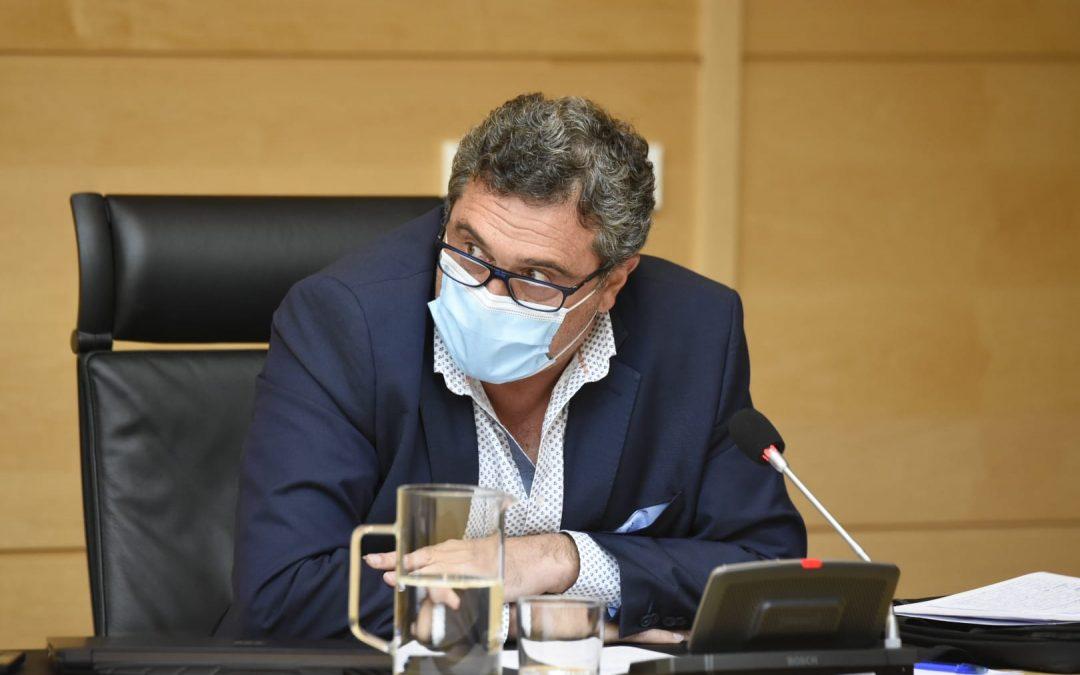 Por Ávila asegura en las Cortes que la atención sanitaria telefónica no es la solución y aboga por la presencialidad